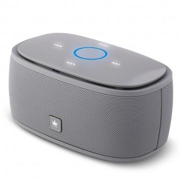 Kingone K5 Bluetooth Lautsprecher Grau