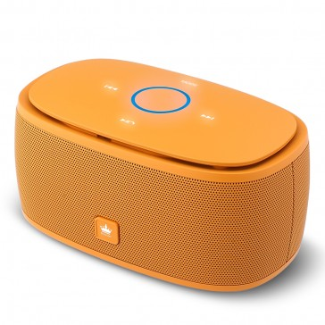 Kingone K5 Bluetooth Lautsprecher Orange