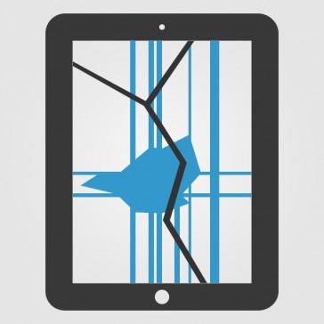 Apple iPad 2 Display Reparatur