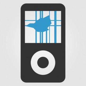 Apple iPod Video Display Reparatur